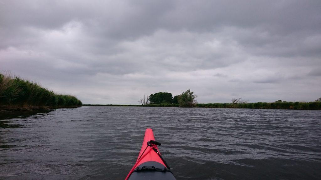 Peene - nahe der Mündung