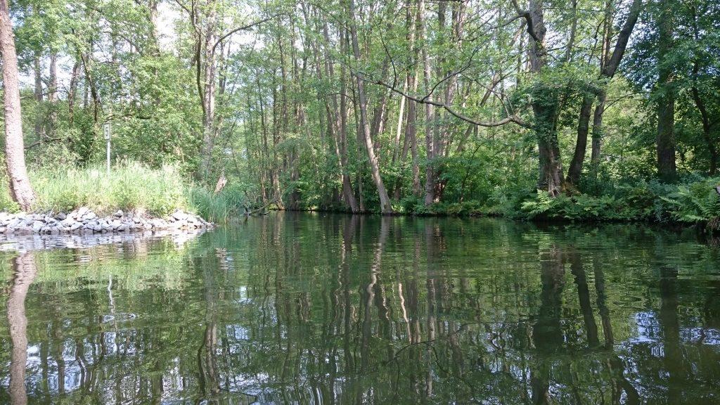 Werbellinkanal - Stichkanal zum Grabowsee