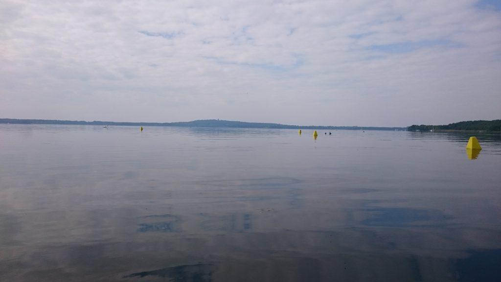Morgenstimmung am Wolziger See
