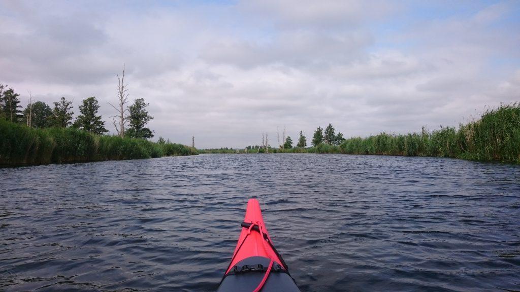 Uferlandschaft an der Peene
